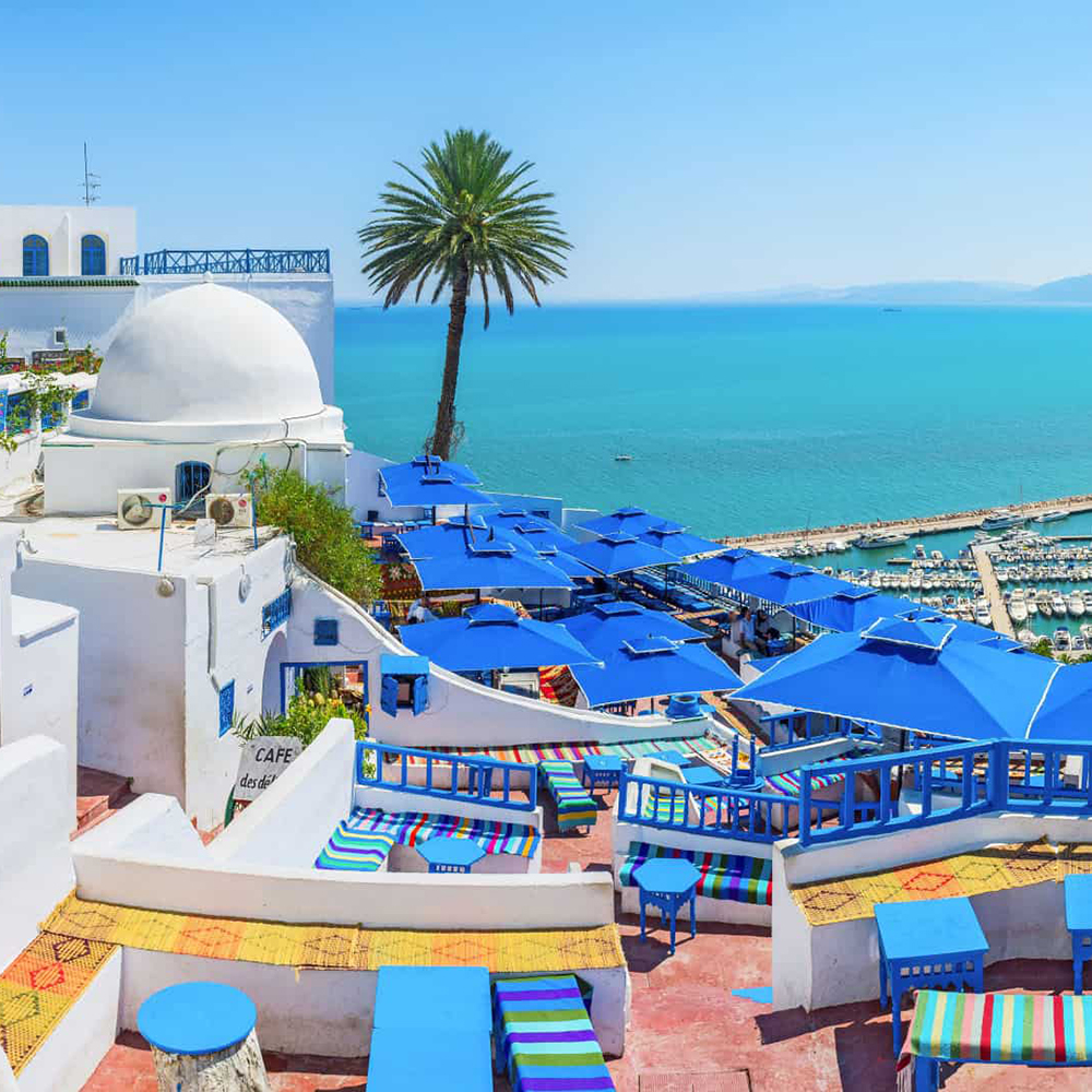 вокруг замер тунис курорты описание фото отзывы сложности экспедиции будут